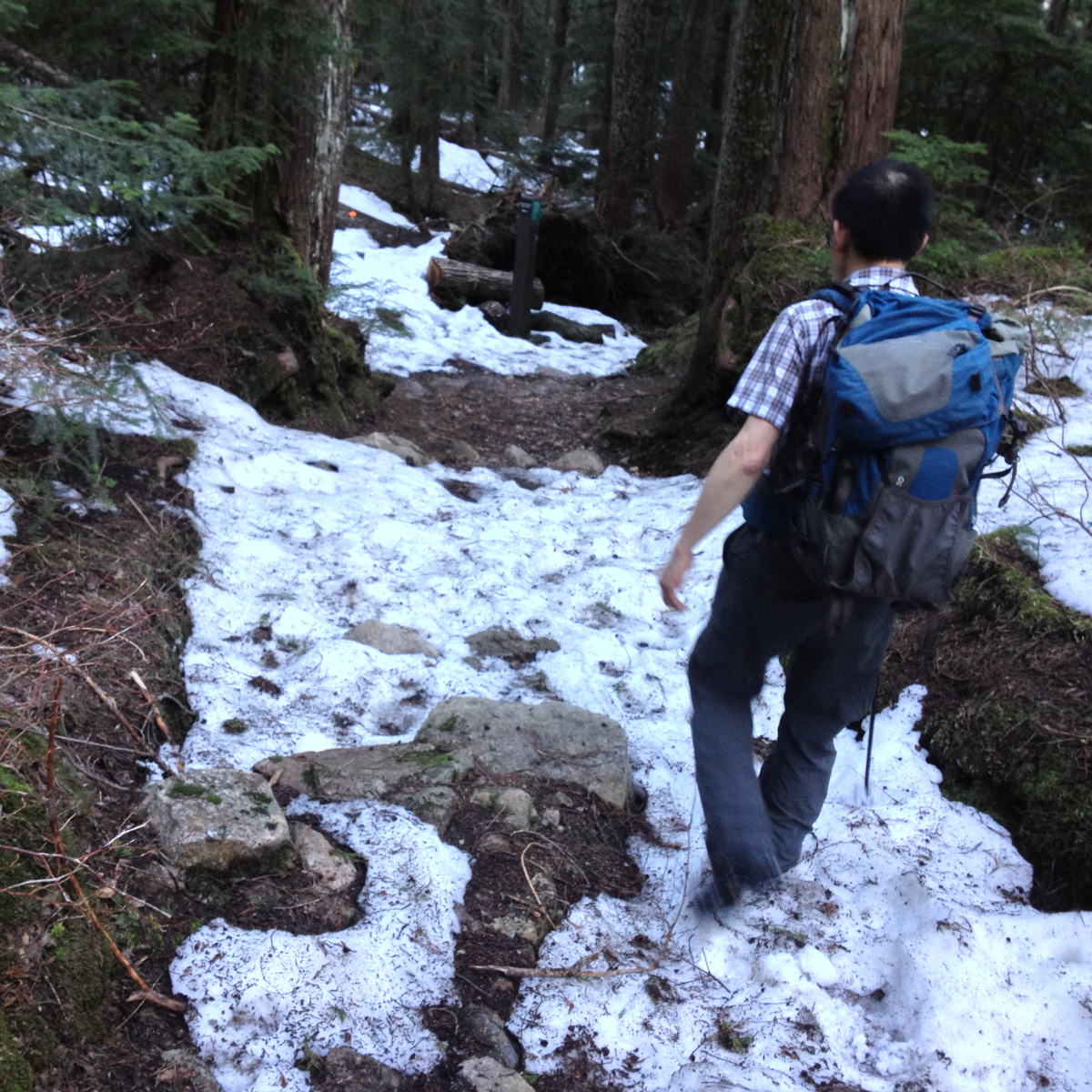 Baden Powell Trail condition, April 11, 2014 near the Blue Gentian Lake junction.